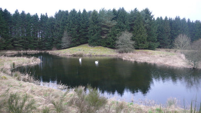 Lagg Farm pond