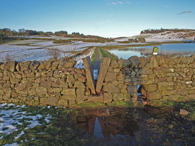 Dry Stone Wall, Knapps Loch