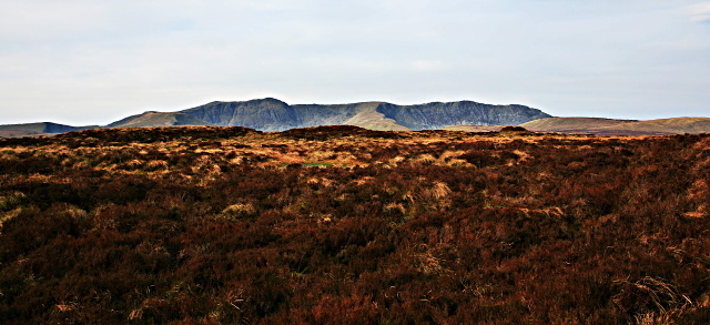 Heather moorland with Aran Hills behind