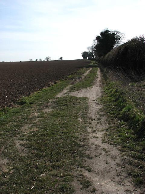 Farm track leading south