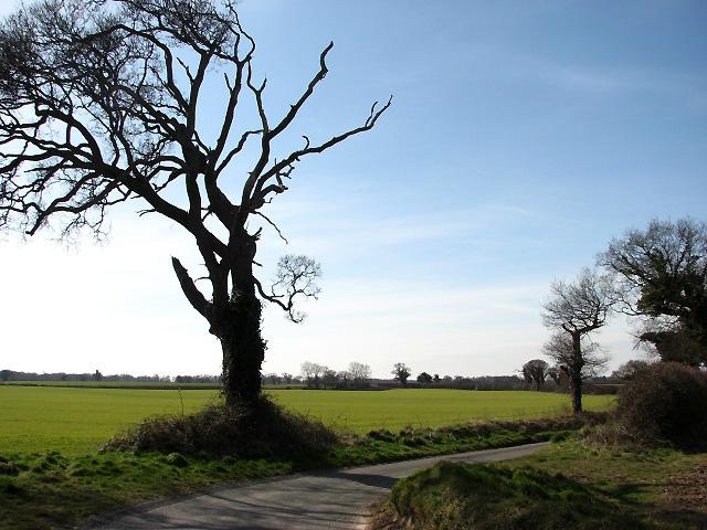 View southwest across fields
