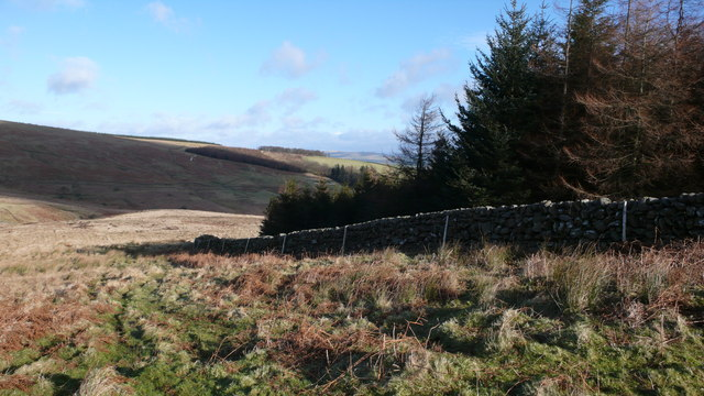 Plantation on Bishop Forest Hill
