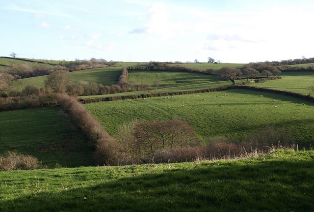 Landscape near Week St Mary