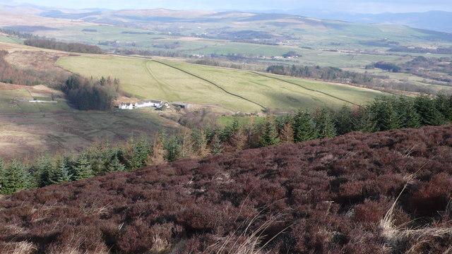 Bishop Forest Hill