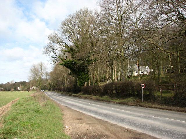View north along the B1436 (Cromer Road)