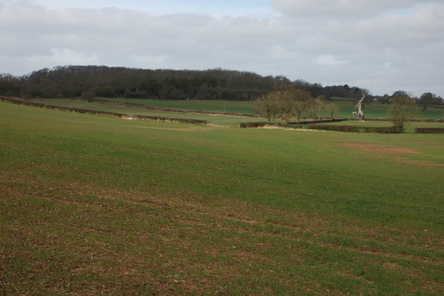 Farmland at Bushley