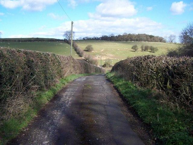 Near Crafta Webb