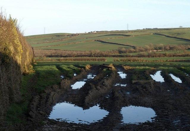 Field near Trevillian Cottage