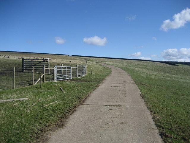 Access Lane over White Crag Moor