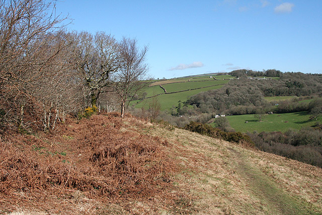St Ive: ditch at Cadsonbury