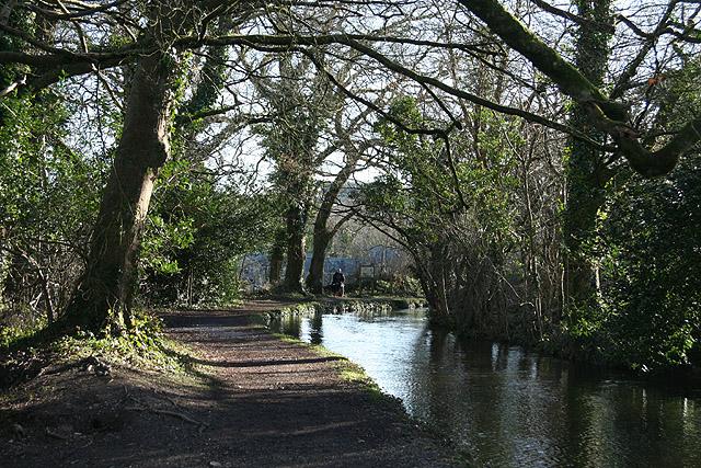 Tavistock: Tavistock Canal