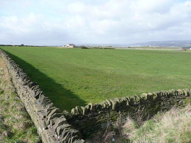 Field off Pinfold Lane, Fixby
