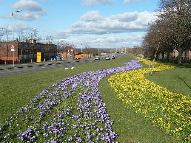 Eastern Way, Carlisle