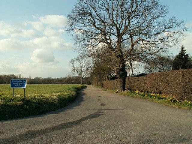 Brook Lane