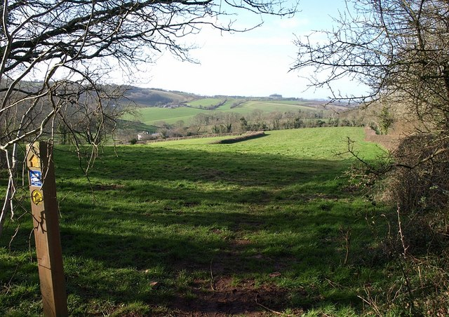 Marldon footpath 5