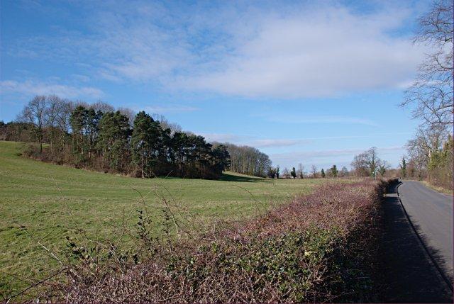 Daleacre Hill from Hemington Lane