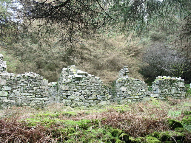 Ruined cottage in the woodlands behind Porth y Nant village