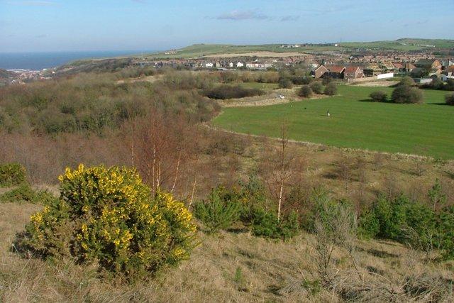 View Over Liverton Mine
