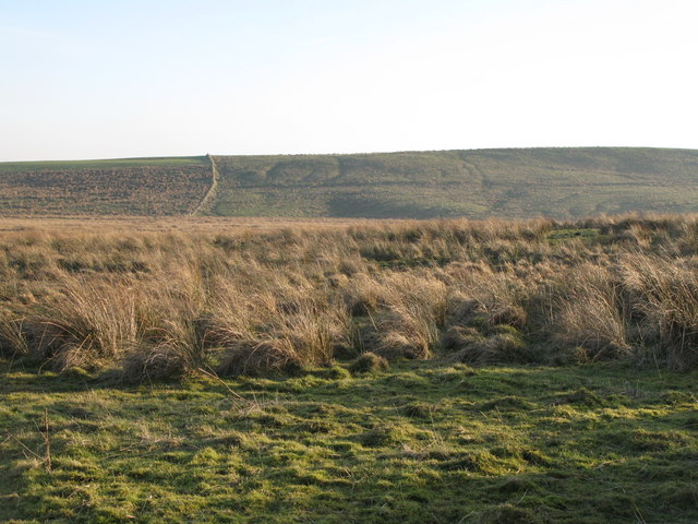 Burnhead Moss and the northern slopes of Chesters Pike