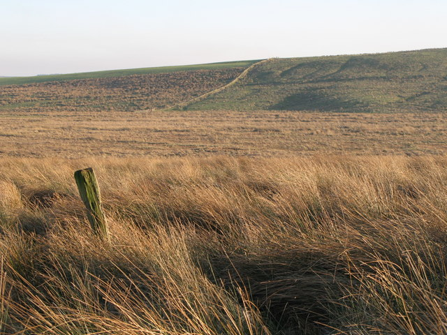 Lonely post on Burnhead Moss