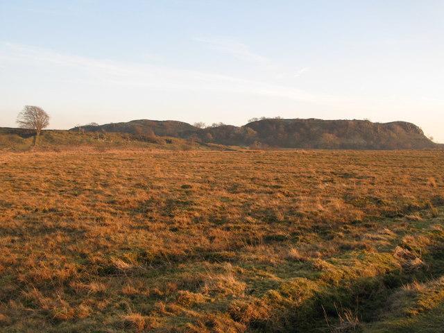 Pastures and moorland below Walltown Crags (2)