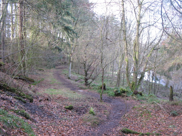 Path on the south bank of the River East Allen