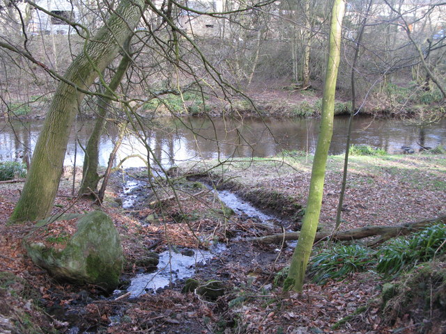 A minor tributary of the River East Allen