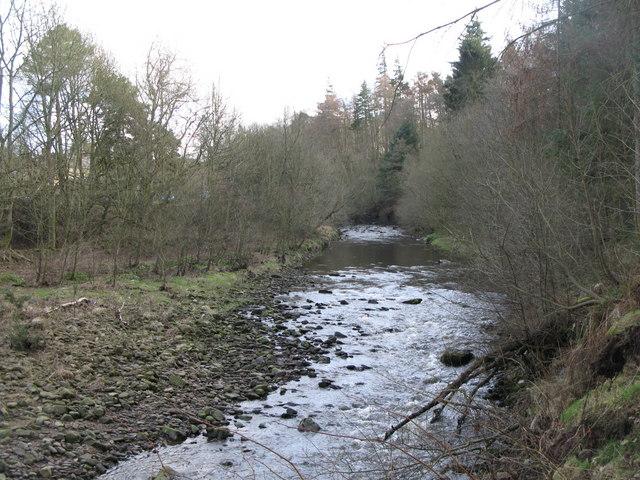 The River East Allen (3)