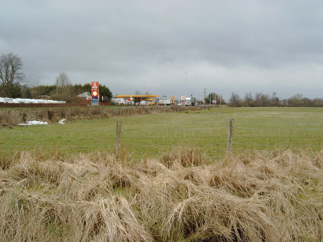 Pasture near Dumfries