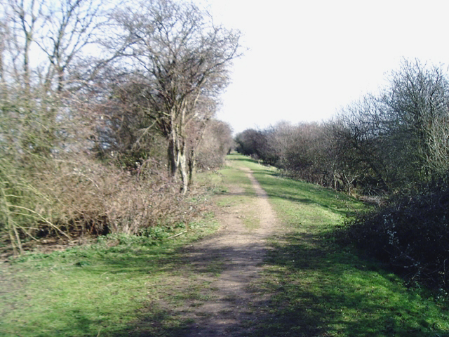 Trackbed of former railway east of Godmanchester