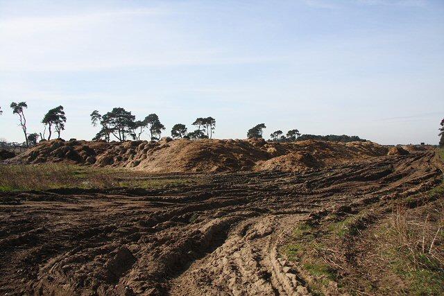 Large compost heap