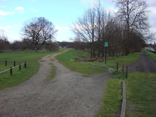 Unmetalled road, Tooting Bec Common