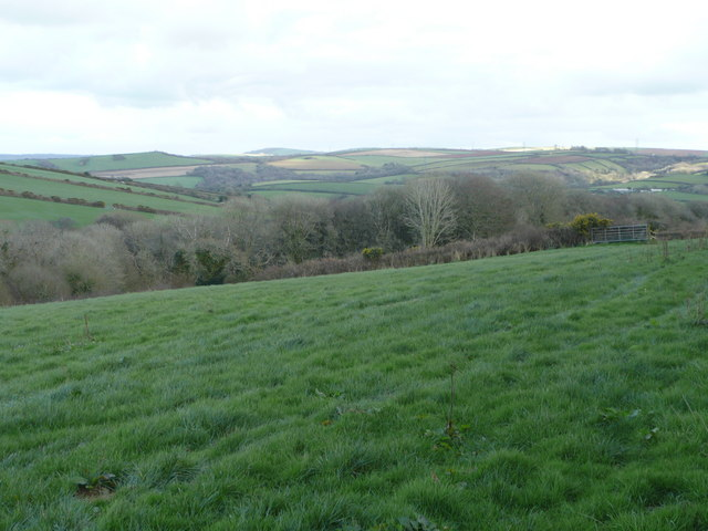 Pastures and a wooded valley