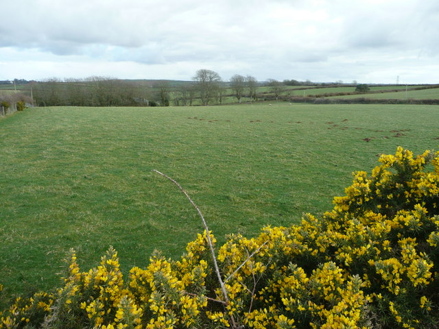 Pastures near Trevidgeowe Farm