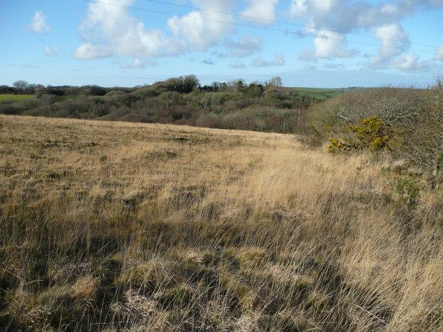 Common land near Demelza