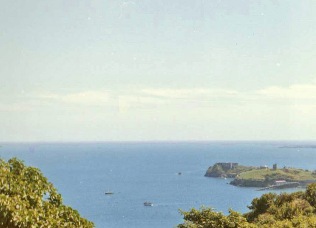 Looking towards Castle from woodland above Tenby, Pembrokeshire