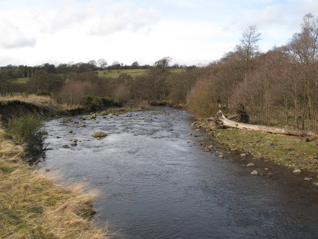 The River East Allen (5)