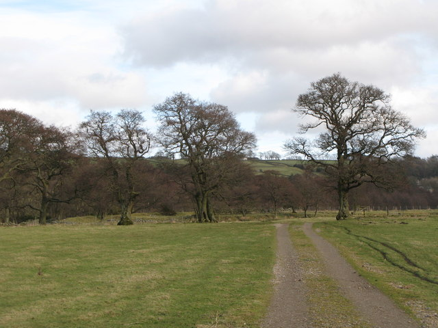 The path from Allenmills Bridge to Oakpool (2)