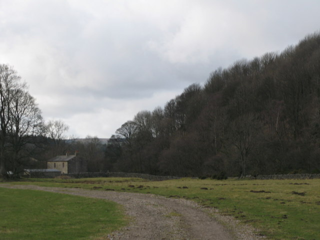 Track on the haugh near Bridge Eal