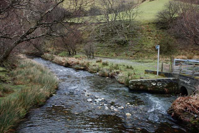The Afon Cywarch near Penrhyn