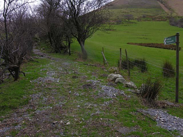 Footpath to Aran Fawddwy