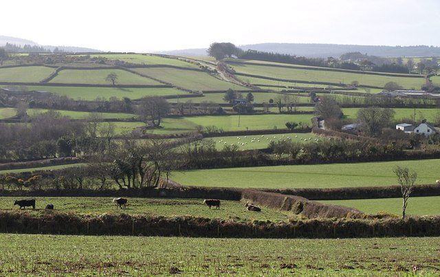 Countryside at Hillhead Farm
