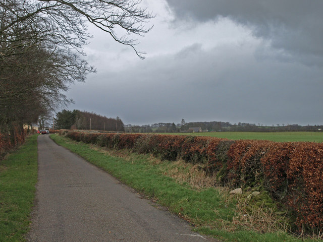 Straight Road, near Blackyett