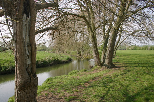 Tree lined River Thame