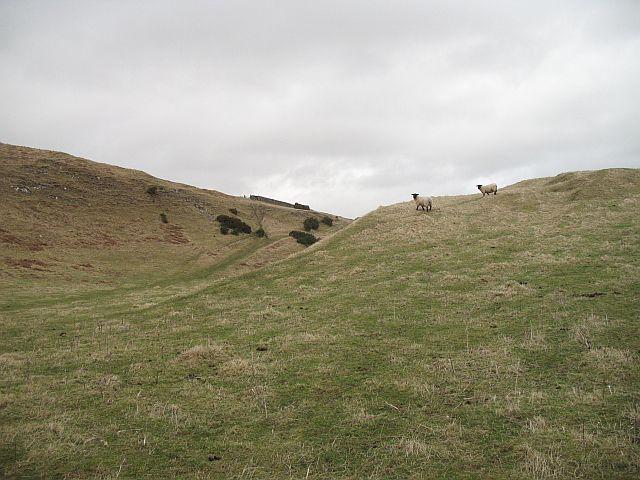 On Wiltonburn Hill