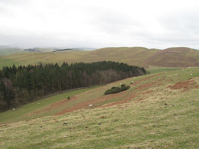 South side of Wiltonburn Hill