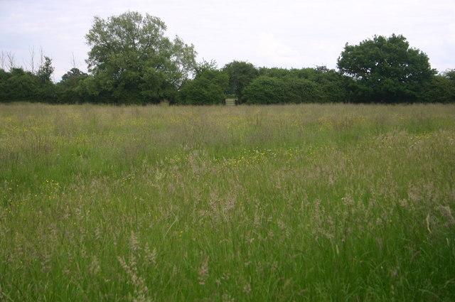 Footpath East of Launton