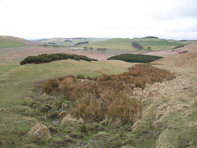 Marsh, Wiltonburn Hill
