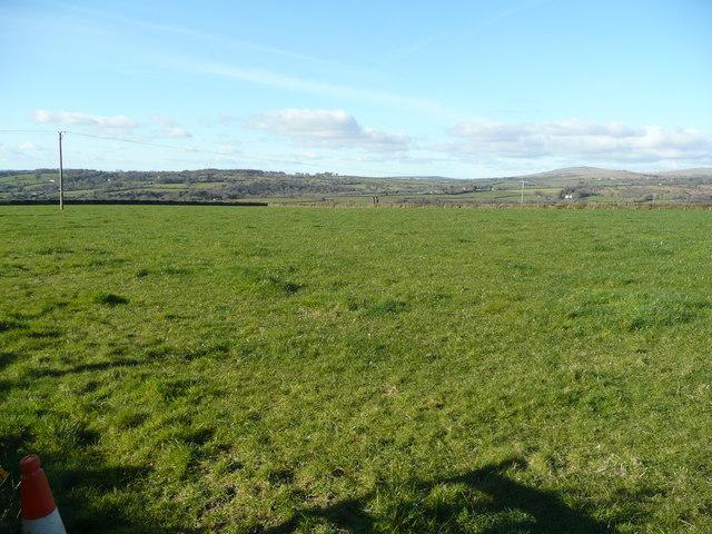 Pasture land at Gnatham Barton