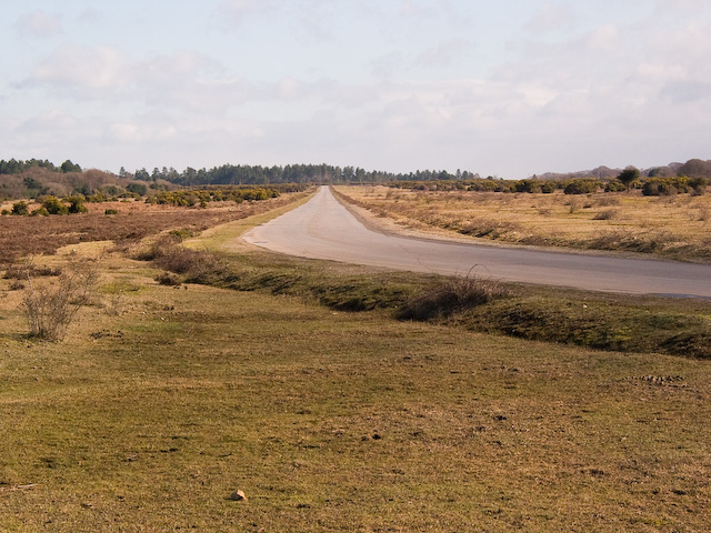 Main runway of defunct Stoney Cross airfield, New Forest